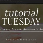 "Free Photoshop Tutorial - How to remove Chromatic Aberration or ""purple fringe"" in Photoshop"