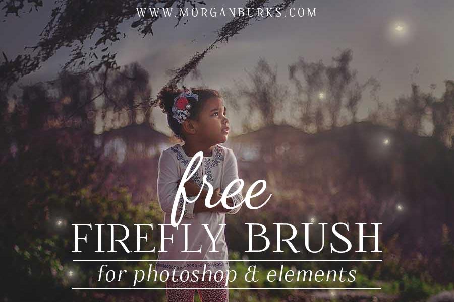 Free-Firefly-Brush-Photoshop-wide