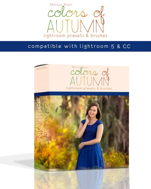 Paint the leaves with Autumn color using the Colors of Autumn Lightroom Presets!