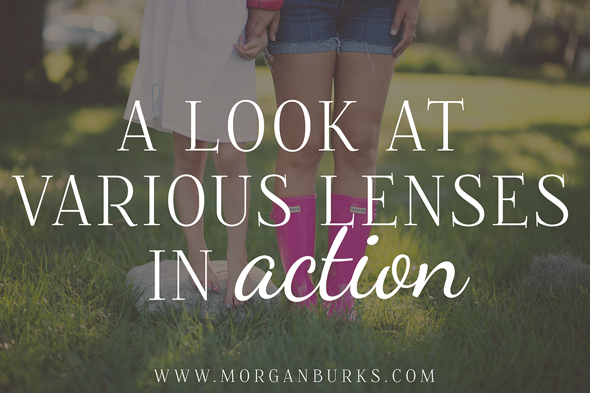 This post will take a look at various lenses in action. I'll discuss each of the prime lenses I own and share pictures I took with each one.