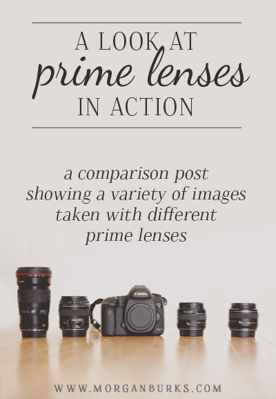 This post will take a look at various prime lenses in action. I'll discuss each of the prime lenses I own and share pictures I took with each one.