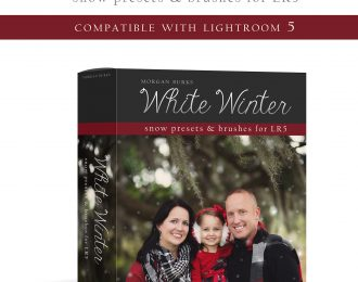 White Winter Presets for Lightroom