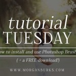 Free Tutorial + Free Download -- How to Install and Use Photoshop Brushes (includes 3 Free Flare Brushes!)