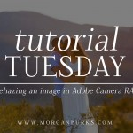 How to fix a hazy image in Adobe Camera RAW in this free tutorial from Morgan Burks