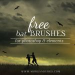 Download these free spooky bat brushes to use on your images in Photoshop.