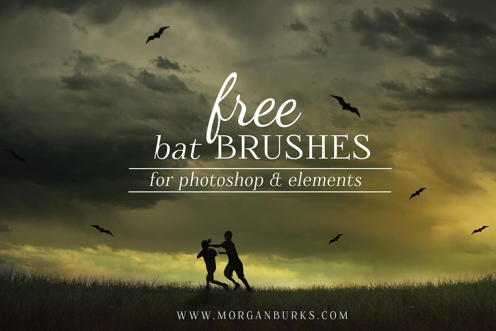 Add some halloween flair to your image with these free bat brushes for Photoshop and Elements.