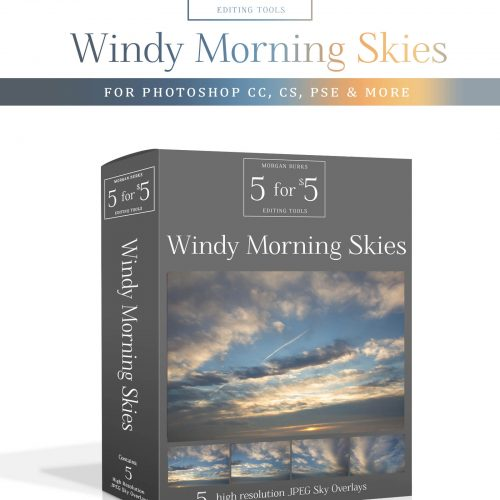 Windy Morning Sky Overlays for Photoshop & Elements - $5 Editing Products for Photographers - Easy to use & affordable!