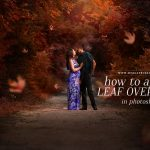 Learn how to apply leaf overlays in photoshop with this free tutorial! Find more videos and products at www.morganburks.com