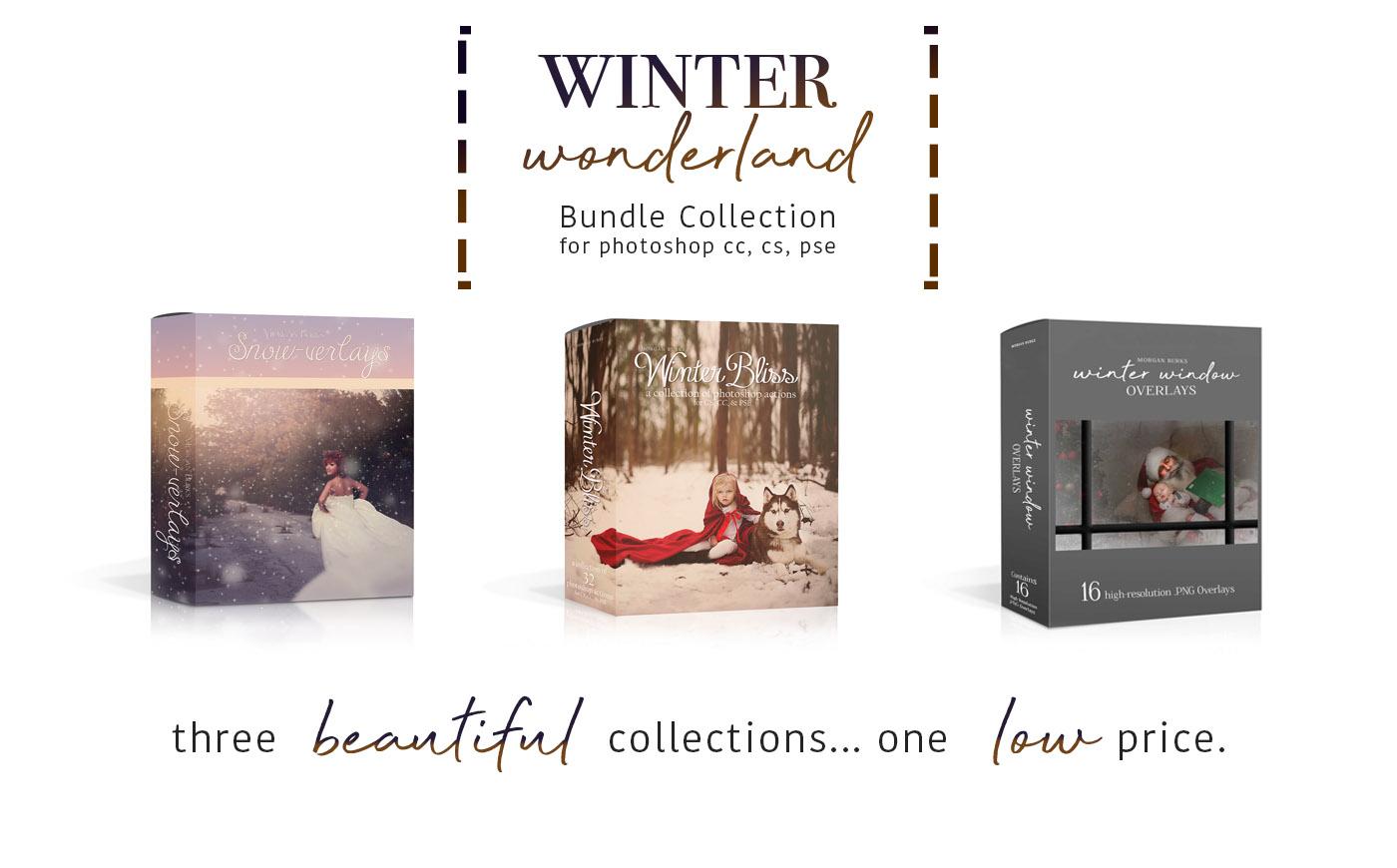 Winter Wonderland Bundle Collection